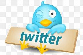 Social Media - Social Media Logo Twitter Animaatio Image PNG