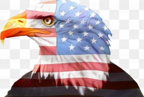 Games Falconiformes - Veterans Day American Flag PNG