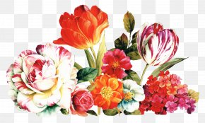 Still Life Photography Perennial Plant - Bouquet Of Flowers Drawing PNG