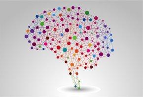 Brain - Mental Health Mental Disorder Awareness Fatigue PNG