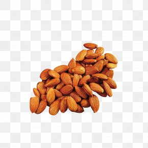 Almond - Apricot Kernel Almond Oil Food PNG