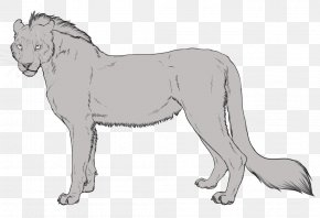 Cat Coat Genetics - Lykoi Animal Dog Cat Body-type Mutation PNG
