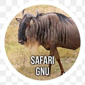 Lion - Antelope Blue Wildebeest Lion Serengeti Even-toed Ungulate PNG