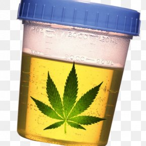 Cannabis - Drug Test Cannabis Clinical Urine Tests PNG