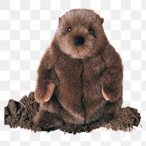 Beaver - Punxsutawney Phil Groundhog Day Beaver PNG