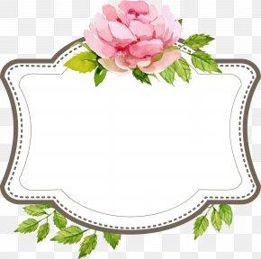 Beautiful Wedding Text Label Border - Wedding Engagement Clip Art PNG