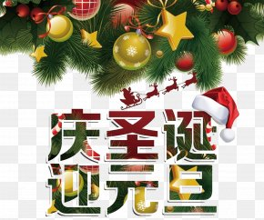 Chin Christmas Garlands New Year's Day - Christmas Tree New Year Christmas Ornament PNG