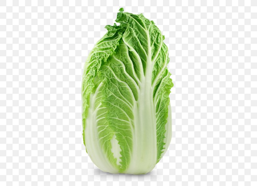 Chard Chinese Cuisine Savoy Cabbage Choy Sum Png 600x595px Chard Bok Choy Brassica Oleracea Cabbage Chinese