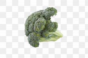 Broccoli - Cream Of Broccoli Soup Vegetarian Cuisine Cauliflower Cruciferous Vegetables PNG