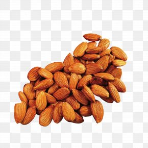 A Pile Of Almonds - Apricot Kernel Almond Cooking Oil PNG