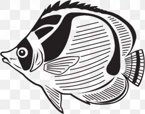 Fish - Coloring Fish Colouring Pages Coloring Book Tropical Fish Aquarium PNG