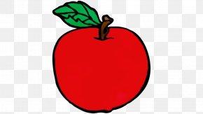 Mcintosh Tree - Leaf Red Apple Fruit Plant PNG