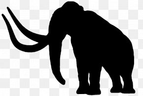 Woolly Mammoth - African Elephant Cat Woolly Mammoth Indian Elephant Elephantidae PNG