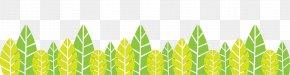 Lemon Leaf Information - Leaf Clip Art Plant Stem Plants PNG