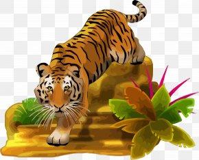 Tiger - Tiger Clip Art Wall Decal Image PNG