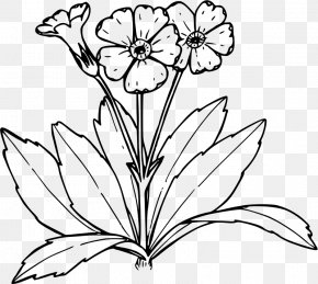 Line Drawing Of Flowers - Primrose Coloring Book Drawing Tree PNG