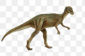 Dinosaur - Pachycephalosaurus Homalocephale Genasauria Marginocephalia Dinosaur PNG