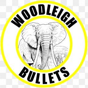 Bullet Impact - Indian Elephant Bullet African Elephant Handloading .500 Black Powder Express PNG