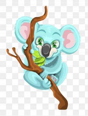 Koala Vector - Koala Australia PNG
