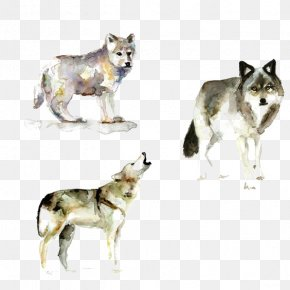 Wolf - Gray Wolf Watercolor Painting Printmaking PNG