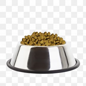 Puppy - Puppy Cat Food English Toy Terrier Dog Food Eukanuba PNG
