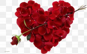 Rose Png Image, Free Picture Download - Valentine's Day Happiness Holiday February 14 Wish PNG