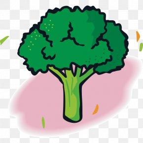 Vegetables,Fruits And Vegetables,Green,fruit,vegetables - Vegetable Fruit Broccoli Food PNG
