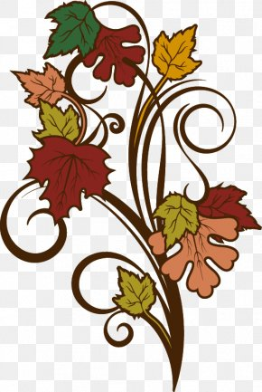 Autumn Maple Decorative Elements - Autumn Leaf Color Adobe Illustrator PNG