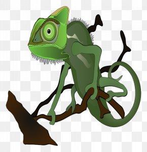 Free Cliparts Animals - Chameleons Lizard Veiled Chameleon Clip Art PNG