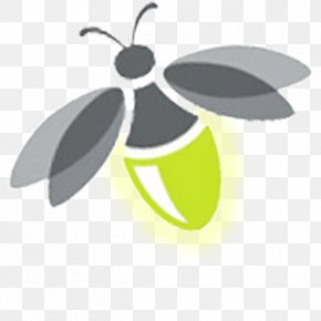 Firefly Transparent - Firefly Clip Art PNG