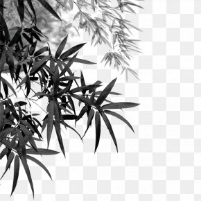 Bamboo - Bamboo Ink Brush PNG
