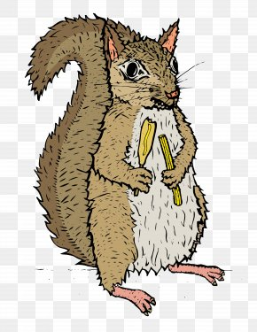 Squirrel - Fox Squirrel Rodent Drawing PNG