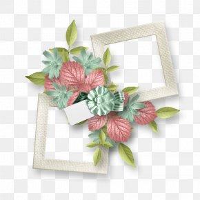 Flower - Picture Frames Floral Design Clip Art PNG