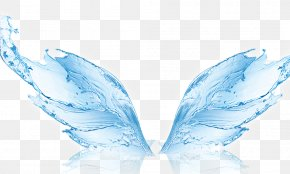 Shape Water Wings - Water Filter Humidifier Membrane Reverse Osmosis PNG