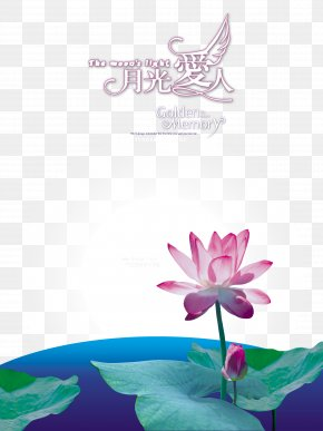 Yueguangairen Lotus Background - Photography Moonlight Over The Lotus Pond Numbered Musical Notation Nelumbo Nucifera PNG