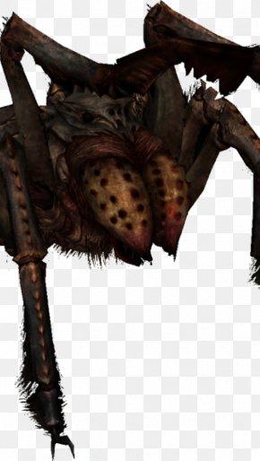 Yak Animal Picture - The Elder Scrolls V: Skyrim U2013 Dragonborn The Elder Scrolls Online: Dark Brotherhood Spider PNG