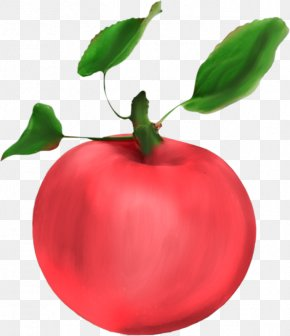 Hand-painted Red Apple - Apple Food Fruit Clip Art PNG