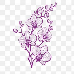 Hand Painted Purple Orchid Vector PNG