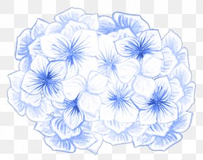 Design - Floral Design Flower Pattern PNG