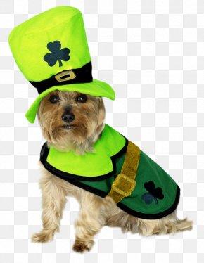 Saint Patricks - Saint Patrick's Day Dog Clothing Costume Dress PNG