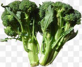 Cauliflower - Romanesco Broccoli Cabbage Cauliflower Kohlrabi PNG