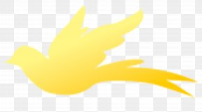 Yellow Bird - Beak Water Bird Duck Logo PNG