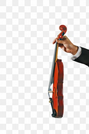 Cello Musical Instrument - String Instrument Violin Violin Family Musical Instrument String Instrument PNG