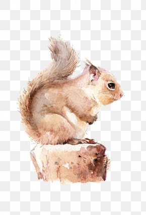 Brown Squirrel - Chipmunk Squirrel Watercolor Painting PNG