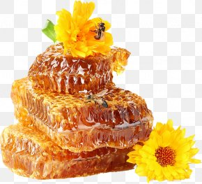 Bee - Stay Naturally Healthy With Honey Bee Sweetness PNG