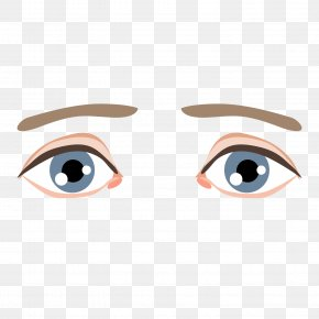 Cartoon Eyebrow Pencil Trace Vector Material - Eyebrow Clip Art PNG