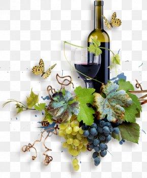 Summer Wine Fest - Grape White Wine Harvest Cardoland PNG