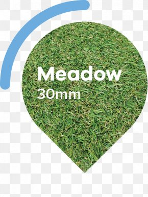 Medow - Lawn Artificial Turf Garden Meadow Thatch PNG