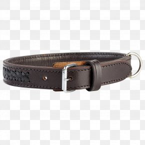 Dog With Collar - Belt Buckles Dog Collar PNG