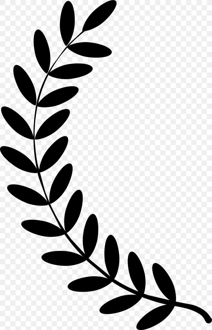 Olive Branch Laurel Wreath Clip Art Png 1544x2399px Branch Bay Laurel Black Black And White Flora